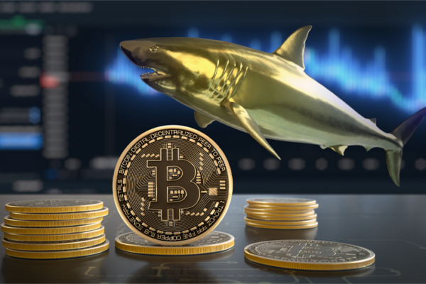 Top Crypto Billionaires Who Are Bitcoin Market Whales